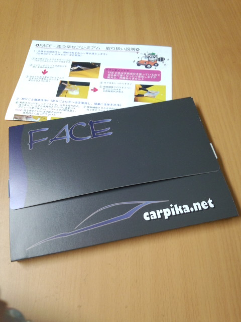 FJ310153