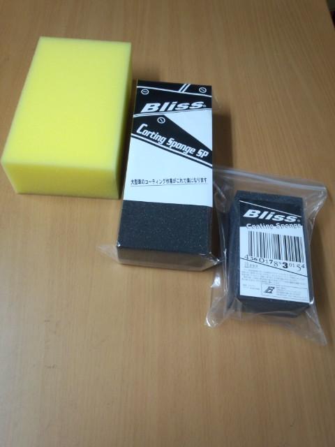 FJ310177