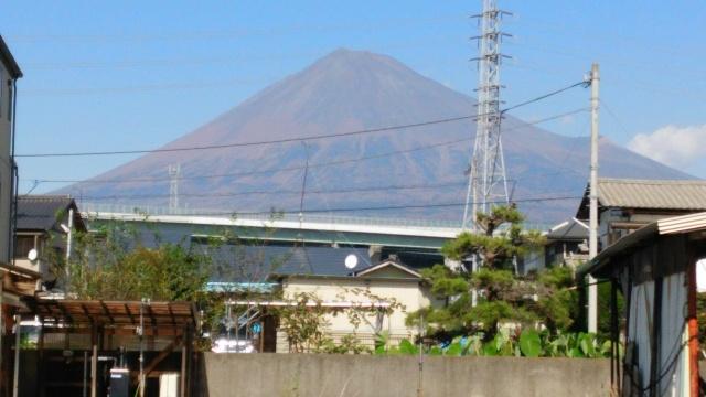 庭から見た富士山